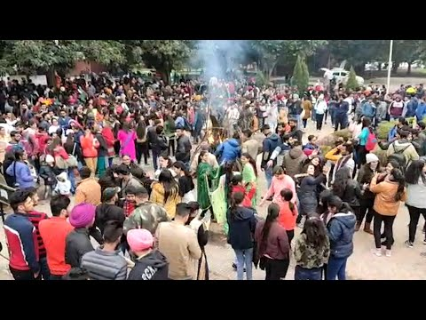 Chandigarh: Lohri Celebrations At Panjab University