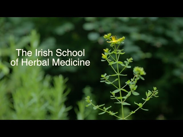 Professional Training in Herbal Medicine
