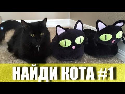[Одноклассники] Ответы на игру Найди кота: Эпизоды 1-4, Уровни 1-80 #1
