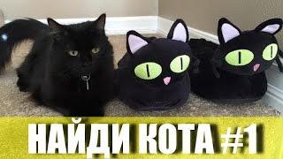 Найди кота #1 Коты маскируются Кот мастер маскировки :) Игры Найди кота