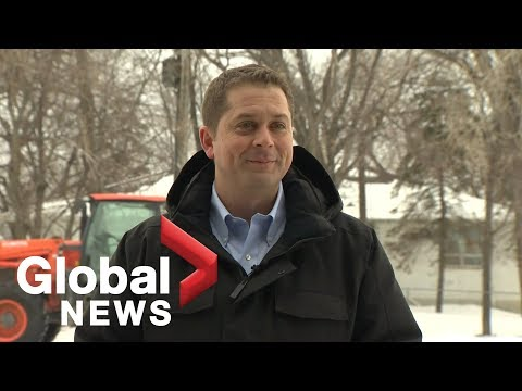 Andrew Scheer says he didn't hear full question on 'pizzagate' conspiracy