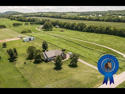 Mini Horse Farm Sumner County Castalian Springs TN