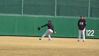 島君、最近遠投をかなりしてます。横は福澤コーチ フォームを指導されな...