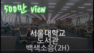 서울대학교 도서관 백색소음 2시간