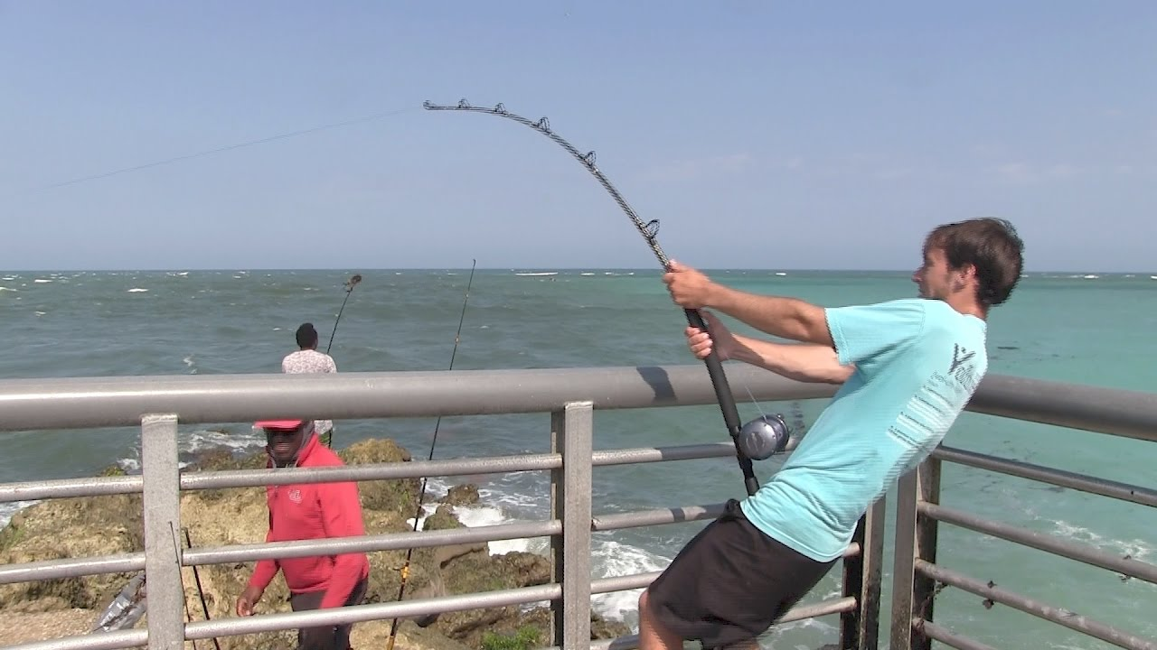 Surf fishing tip of the week 18 shark fishing from pier for Shark fishing gear for beach