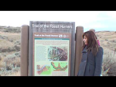 Globe Trot at Dinosaur Provincial Park in Alberta Canada