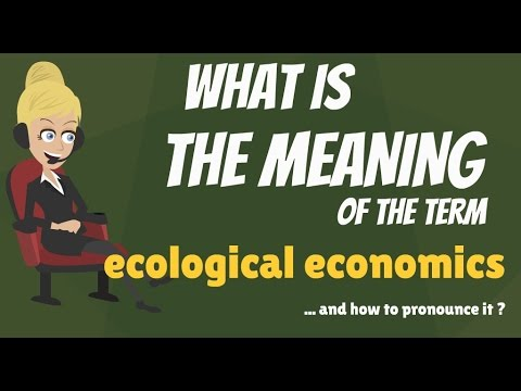 What is ECOLOGICAL ECONOMICS? What does ECOLOGICAL ECONOMICS mean?