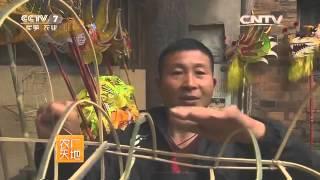 20160422 农广天地  舞动的传奇——奉化布龙