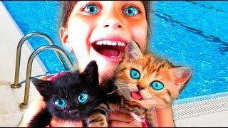 - СПАСЛИ КОТЯТ Симулятор Котенка Симулятор СОБАЧКИ kids game learn Little Kitten Play Fun Pet Care