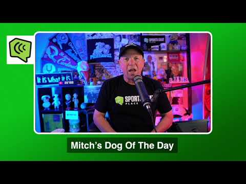 Mitch's Dog of the Day 9/22/20: Free MLB Pick MLB Picks, Predictions and Betting Tips