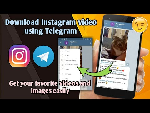 How to download Instagram video on Telegram