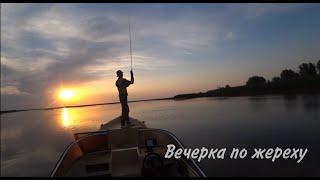 Летний ЖОР ЖЕРЕХА в Астрахани на РАСКАТАХ МОНСТРЫ ловятся на маласы