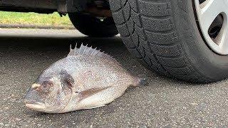 Crushing Crunchy & Soft Things by Car! - EXPERIMENT: CAR VS FISH