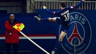 Zlatan Ibrahimovic ● The Taekwondo Footballer