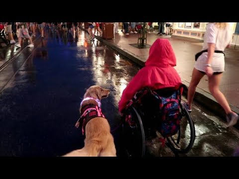 Magic Kingdom with My Wheelchair | No Power Assist ♿ (10/28/17)
