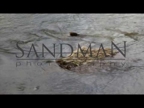 The Great Morava River - Serbia (Panasonic Lumix G7 Test)