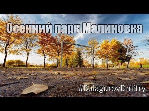 Осенний парк Малиновка в Красногвардейском районе СПб L Aerial SPB #BalagurovDmitry