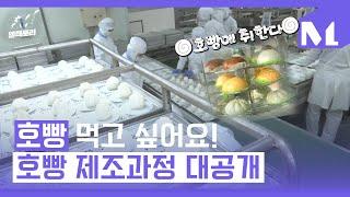 [엠팩토리] 겨울철 대표 간식 호빵, 호빵의 탄생 보고…