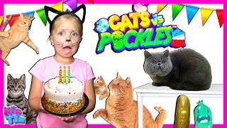 Cat Dance Party Pretend Play With Kin Tin | Cats VS Pickles In Real Life