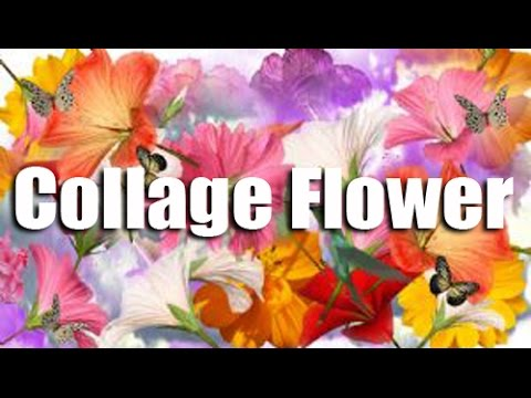 How To Make Collage Flower Creative Collage Art Work Easy Steps