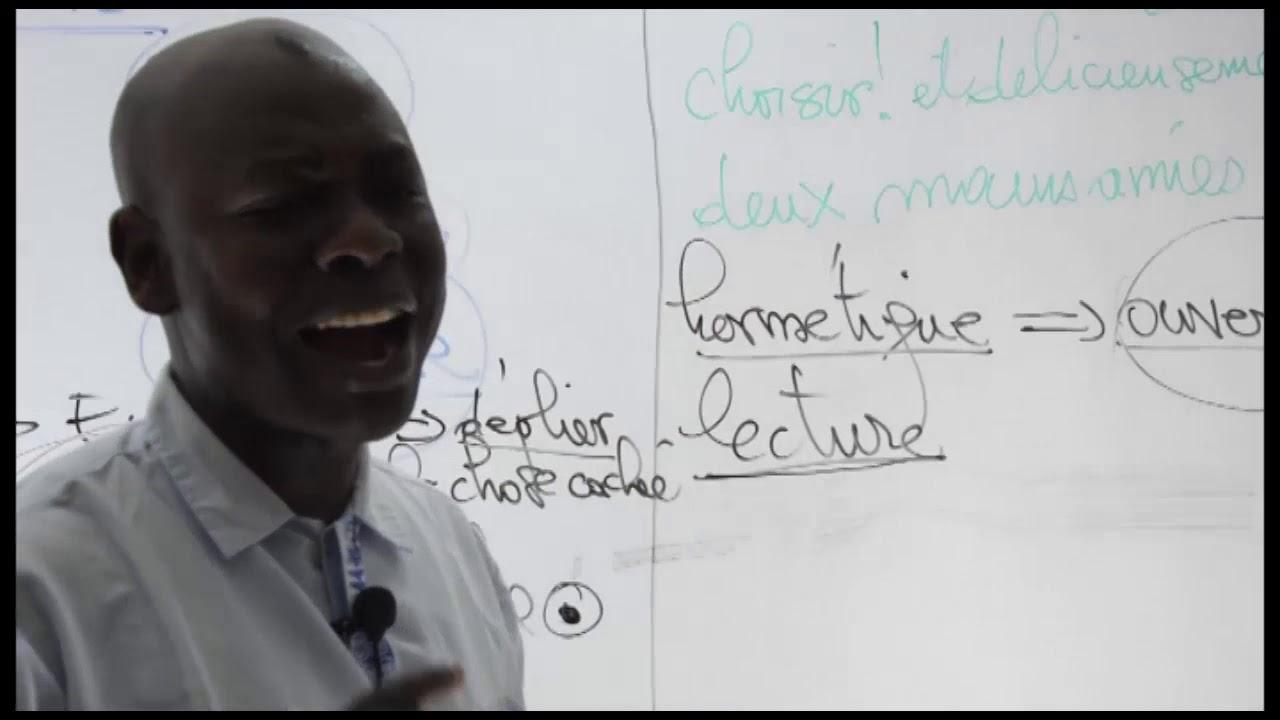 COURS FRANCAIS : COMMENTAIRE LITTERAIRE - YouTube