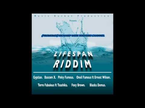 LIFE SPAN RIDDIM (Mix-Aug 2017) MUSIC BASKET