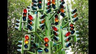 Праздники 5 августа. Международный день светофора