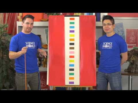 Here's your mental workout for the day: The Stroop Test