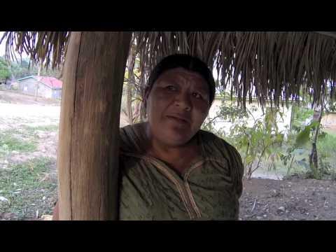 t.e.a-san-miguel,-guesthouse,-belize,-toledo-ecotourism-association