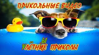 Летние Приколы - Улетные Приколы - Видео Приколы 2020 - Лучшие Приколы на Воде.