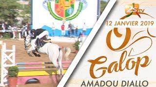 O GALOP DU 12 JANVIER 2019 AVEC AMADOU DIALLO