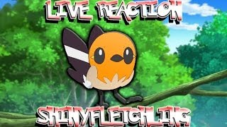 (New camera) LIVE REACTION Shiny Fletchling after 918 RE