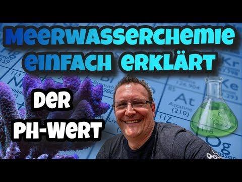 MeerwasserChemie einfach erklärt   ⭐Der pH Wert⭐