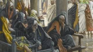 Читаем Евангелие вместе с Церковью. 24 мая 2017г