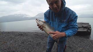Мои семь дней на Аляске