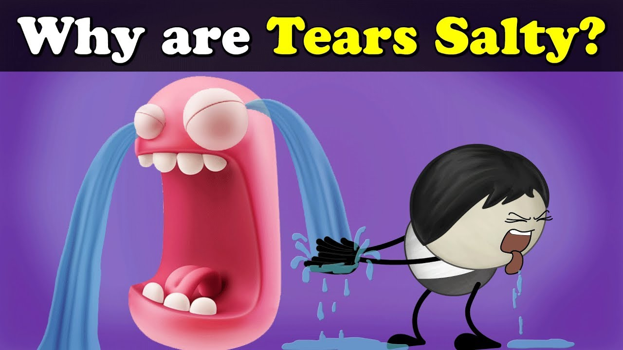 Why are Tears Salty? | #aumsum #kids #science #education #children - YouTube