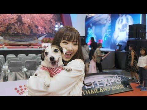 "Throwback ""Pet Expo Thailand 2018"" with Jannine Weigel (พลอยชมพู) - วันที่ 17 Jun 2018"
