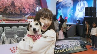 "Throwback ""Pet Expo Thailand 2018"" with Jannine Weigel (พลอยชมพู)"