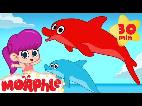 My Magic Dolphin Morphle Plays With The Mermaid Girl