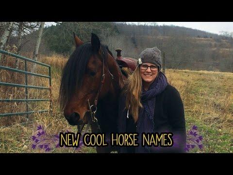 New Horse Names!
