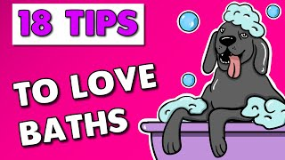 Dog Bath Time   How to get your Dog to Love Bath Time (18 Tips)