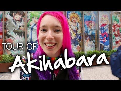 AKIHABARA TOUR: Anime Shops & Arcades