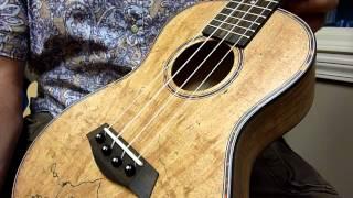 Kanile'a Islander Spalted Maple Concert Demo