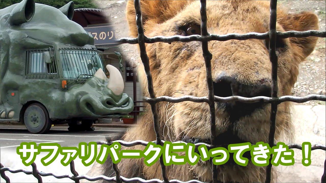 サファリパーク 事故 群馬 群馬サファリでクマが飼育員襲う 他パークの安全対策は?|日刊ゲンダイDIGITAL