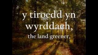 Angel - Tecwyn Ifan (geiriau / lyrics)