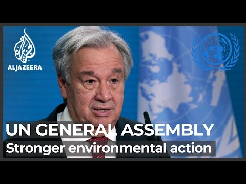 UN General Assembly: World leaders call for stronger environmental action