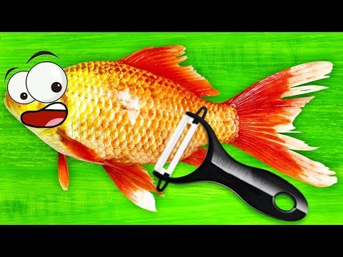 Best Games for Kids - Play Fun Cooking Sushi Kids Game - TO FU Oh!SUSHI Kitchen