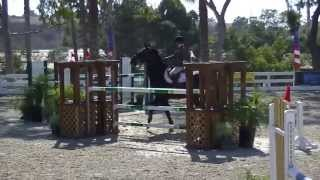 Horse Bloopers 2013 (Bad Day)