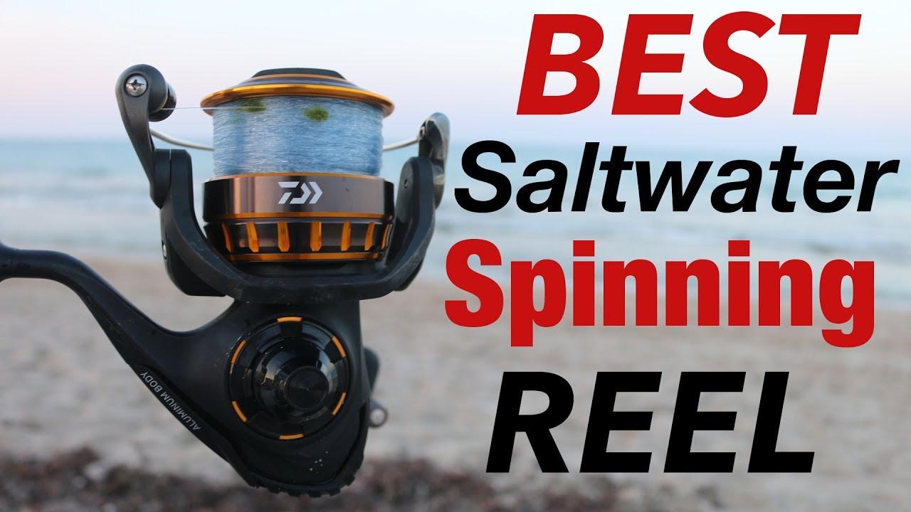A Legend Reborn Daiwa Bg Reel Review Best Saltwater Spinning Reel