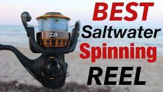 A LEGEND Reborn- Daiwa BG REEL Review (BEST Saltwater Spinning Reel)